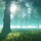 Mysterious Jungle - VideoHive Item for Sale