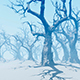 Fairy Winter Forest - VideoHive Item for Sale
