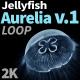 Jellyfish Aurelia 1 - VideoHive Item for Sale