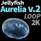 Jellyfish Aurelia 2 - VideoHive Item for Sale