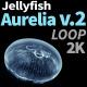 Jellyfish Aurelia 2 - VideoHive Item for Sale