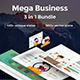 3 in1 Mega Business Bundle Google Slide