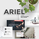 Ariel Minimal Powerpoint Template
