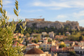 Athens, Greece. Olive tree on Acropolis and Monastiraki abstract background