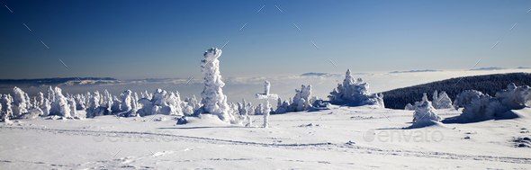 Snow covered winter landscape - Stock Photo - Images