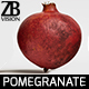 Pomegranate 003 - 3DOcean Item for Sale