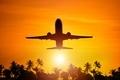 Airplane Flight To Paradise