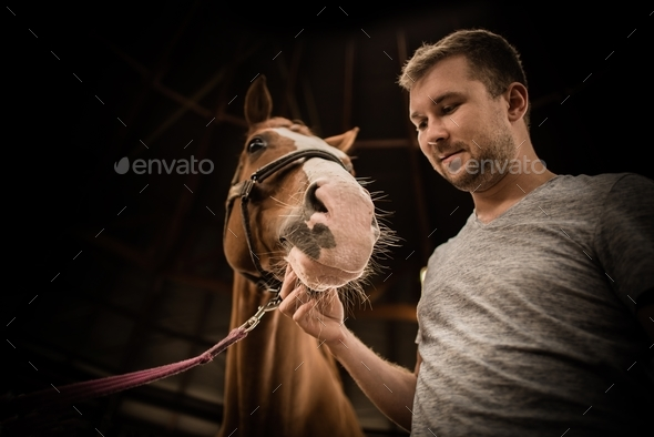 The Men and His Horse - Stock Photo - Images