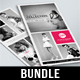 DL Fashion Flyer Bundle