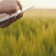 Farmer Using Tablet - . AGRICULTURE. - VideoHive Item for Sale