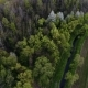 Aerial View of Forest. - VideoHive Item for Sale