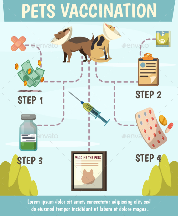 Pets Compulsory Vaccination Orthogonal Flowchart - Animals Characters