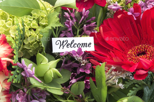 Welcome Card with Spring Flowers - Stock Photo - Images