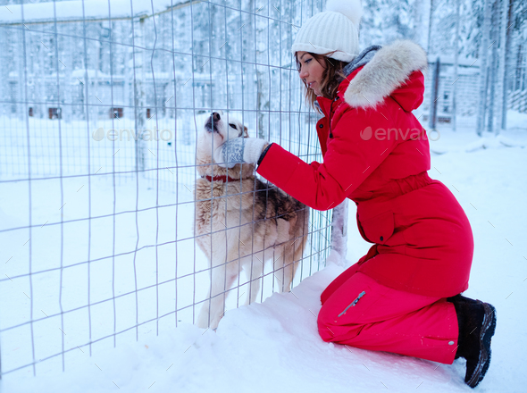 Happy woman playing with husky dog - Stock Photo - Images