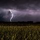 Crickets, Rain & Thunder Ambience