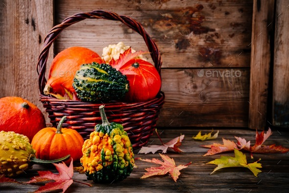 Colorful pumpkins and fall leaves on wooden background - Stock Photo - Images