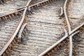 railroad tracks - PhotoDune Item for Sale