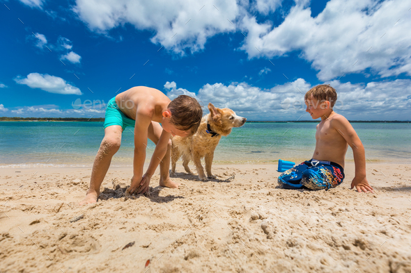 Two boys hugging golden retriever on the sandy beach - Stock Photo - Images