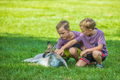 Two little boys sitting on the grass and touching australian kan - PhotoDune Item for Sale