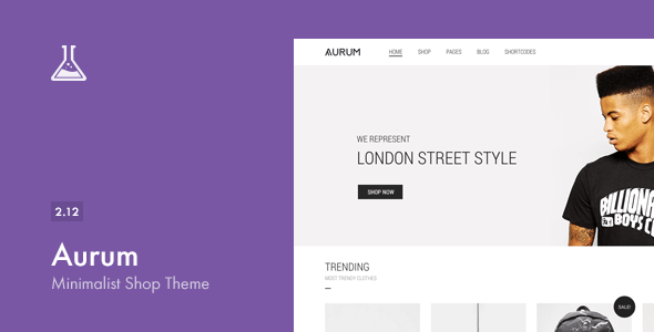 The 15+ Best Minimalist WordPress Themes for 2019 4