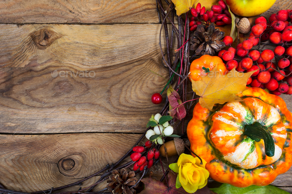 Thanksgiving background with decorative pumpkin and yellow rose - Stock Photo - Images