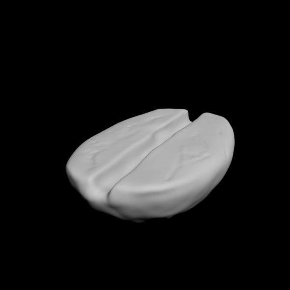 3DOcean beans caffe 20871305