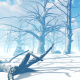 Winter in the Forest - VideoHive Item for Sale