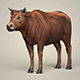 Game Ready Low Poly Bull - 3DOcean Item for Sale