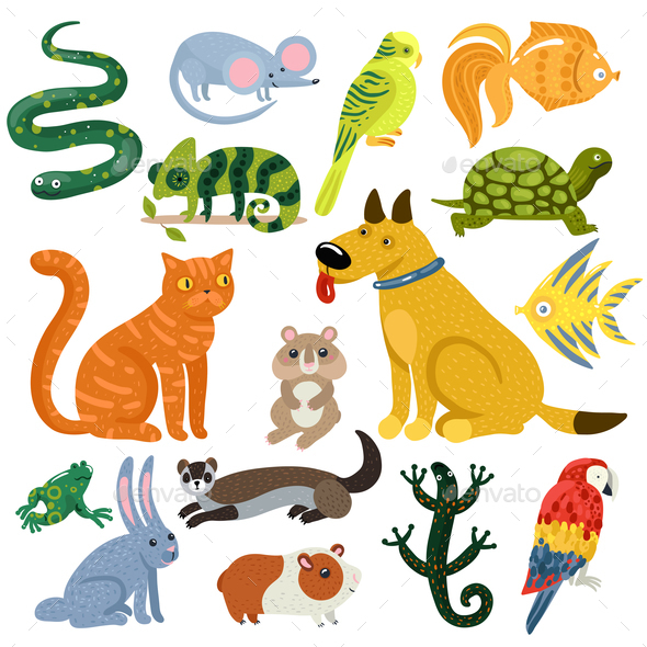 Pets Colorful Icons Set - Animals Characters