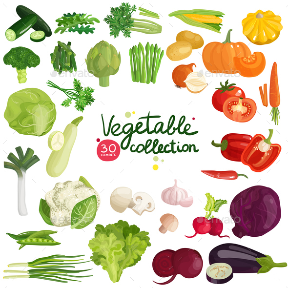 Vegetables and Herbs Collection - Food Objects