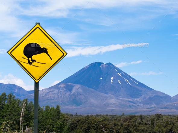 Active volcano Mount Ngauruhoe fun Kiwi road sign - Stock Photo - Images