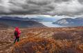Hiking rainy autumn fall boreal alpine tundra path - PhotoDune Item for Sale