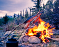 Tasty grayling fish over taiga wilderness campfire - PhotoDune Item for Sale