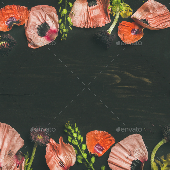 Pink and red flower petals, branches and leaves, square crop - Stock Photo - Images