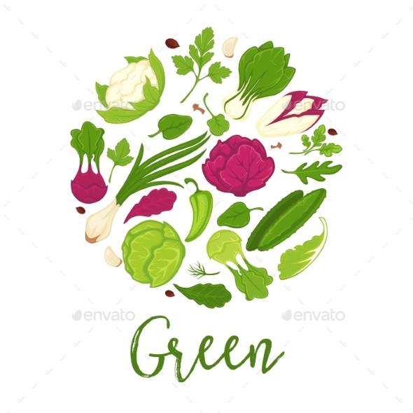 Green Salads Fresh Vegetables and Farm Herbs - Food Objects