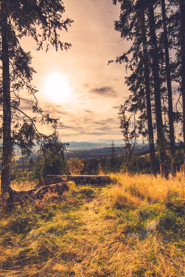 Autumn in high Tatra mountains,toned image - Stock Photo - Images