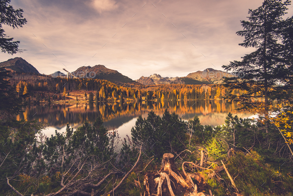 Lake in high Tatra mountains, toned image - Stock Photo - Images