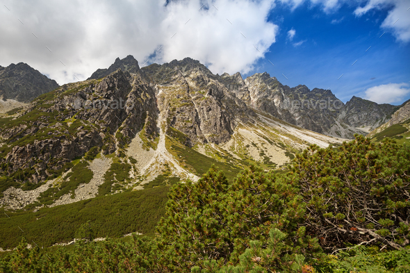 Admiring the beauty of rocky Tatra mountains - Stock Photo - Images