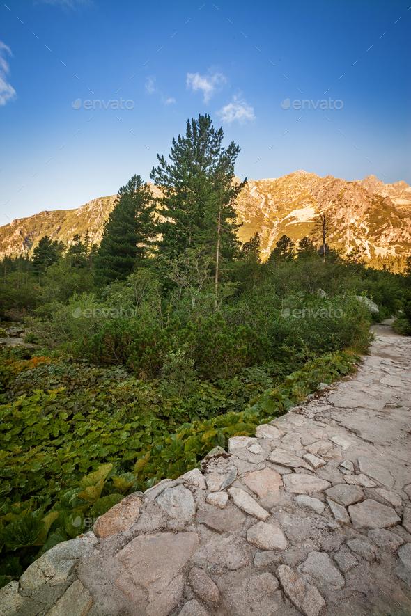 Valley in Tatra Mountains, Slovakia, Europe - Stock Photo - Images