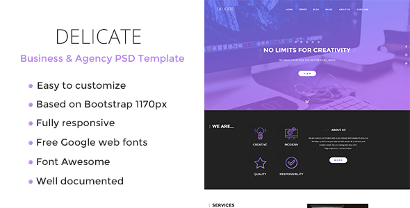 ThemeForest Delicate Responsive PSD Template 20761892