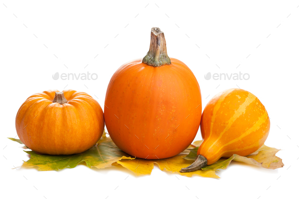 decorative pumpkins and autumn leaves isolated - Stock Photo - Images