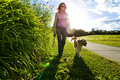 Young woman and golden retriever walking - PhotoDune Item for Sale