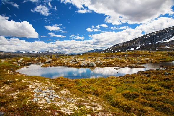 mountain view on Aursjovegen road, Norway - Stock Photo - Images