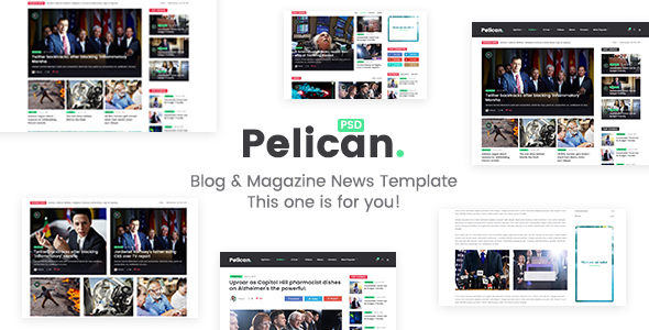 ThemeForest Pelican Magazine & Personal Blog PSD Template 20879403