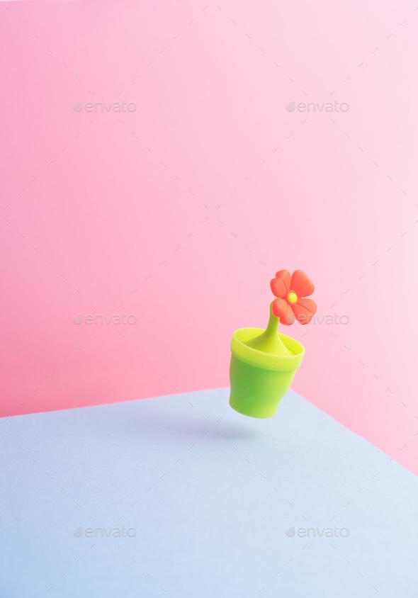 Cute Orange Flower - Stock Photo - Images