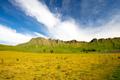 Te Mata Peak New Zealand - PhotoDune Item for Sale
