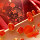 Blood Cells Animation_Vol.2 - VideoHive Item for Sale