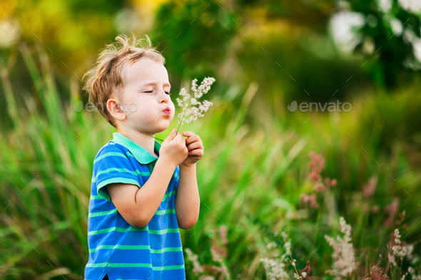 Boy blowing on a dandelion in the summer in the park - Stock Photo - Images