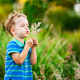 Boy blowing on a dandelion in the summer in the park - PhotoDune Item for Sale