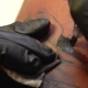 Tattoo Applying Ink on Skin with Tattoo Machine - VideoHive Item for Sale